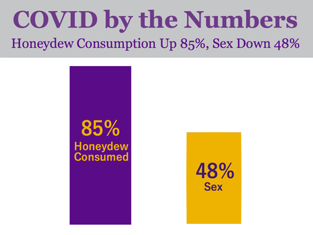 COVID By the Numbers: Honeydew Consumption up 85%, Sex Down 48%