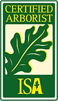 Arbor.png
