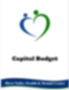capitalbudgetsnip.PNG