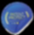patent logo.png