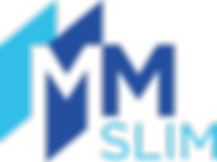 Logo - MMSLIM 2.png