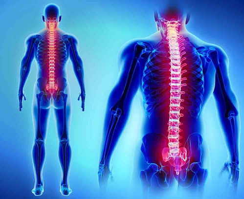 spine-back-pain-oakland-physical-therapy