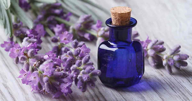 lavender-essential-oil-09302017-min.jpg