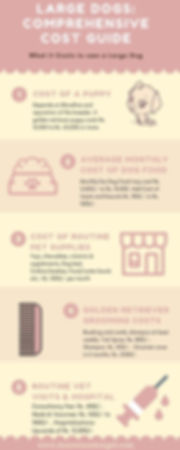 Golden Retriever Price and Cost Guide Infographics