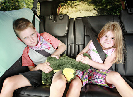 Oh, the Places You'll Go: Travelling with 12 Kids