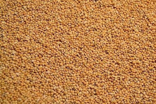 Golden German Millet