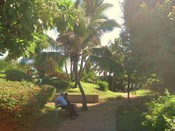 Jardin calme à proximité