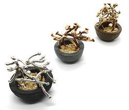 bonsai rings.JPG
