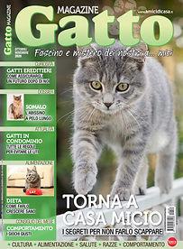 gatto magazine settembre.jpg