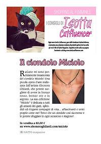 gatto magazine.jpg