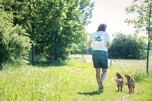 Cute Dogs München Babette Ferchen
