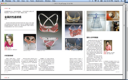 Chinese Arts and Culture MAg