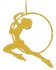 icon (gold).png