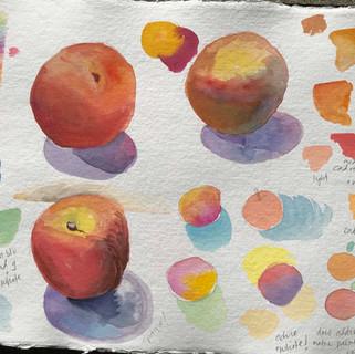 Peach by the Sea study