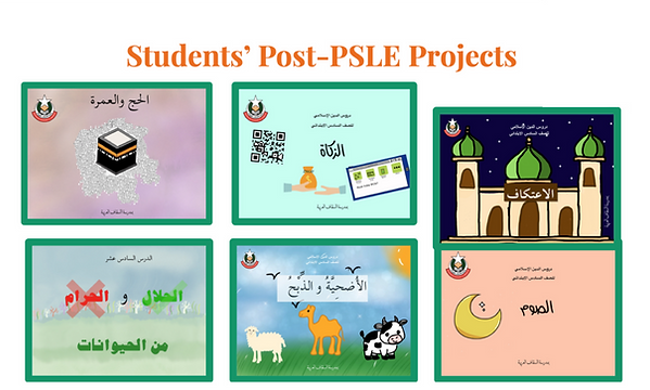 psle projects-04.png