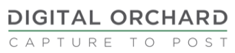 DO Logo 2020.png
