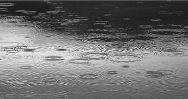 Gray raindrops.jpg