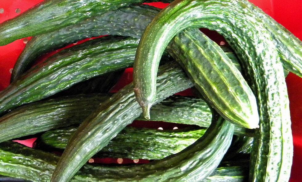 Shuyu Dragon Cucumber