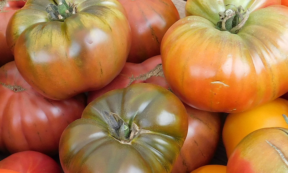 Heirloom Tomato Mix