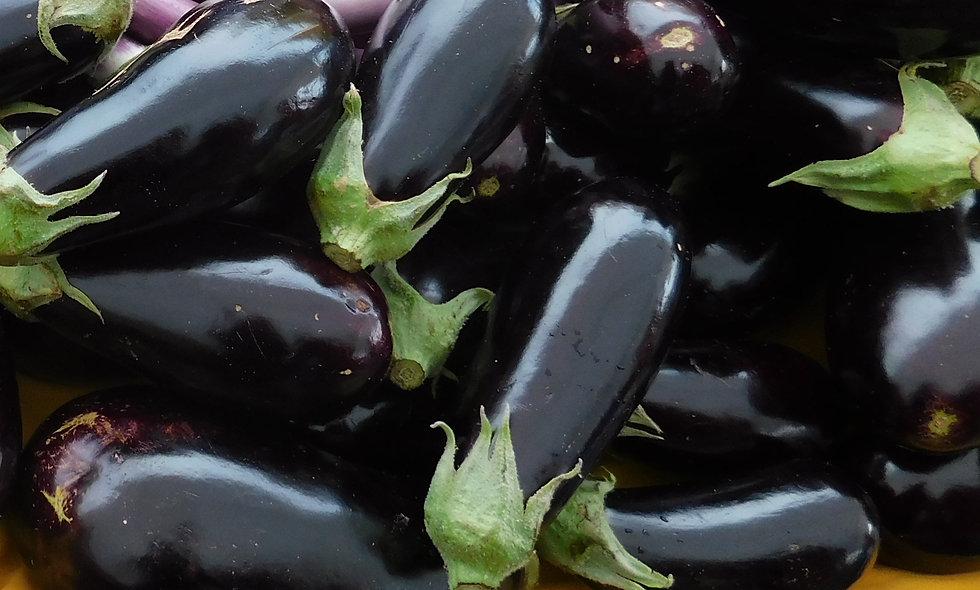 Purple Globe Eggplant