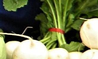 Japanese Salad Turnip