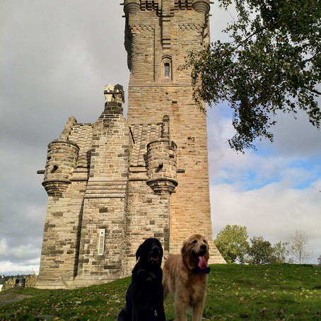 The National Wallace Monument: Honouring a Scottish Hero