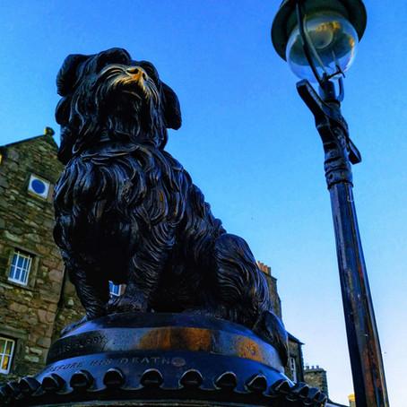 "Greyfriars Bobby- Edinburgh's ""Best Friend"""
