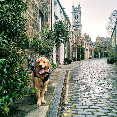Stockbridge, Edinburgh: Trekking the Markets, Mews, and Lanes