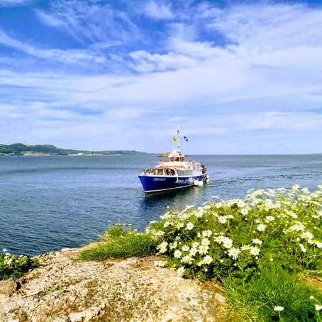 Set Sail to Inchcolm Island
