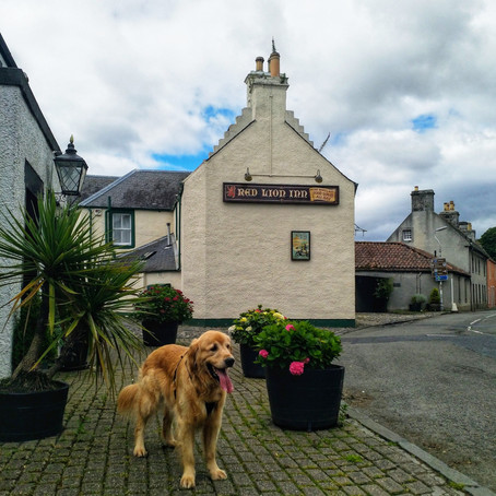 Canine (and Human) Adventures in Culross, Scotland