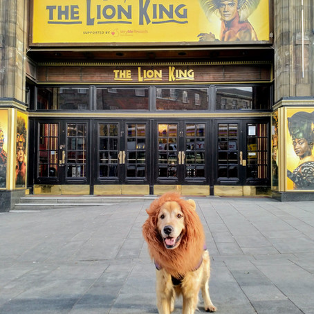 Disney's The Lion King at the Edinburgh Playhouse