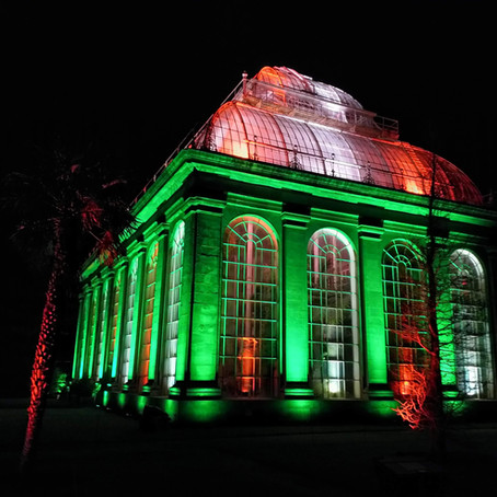Christmas at the Botanics: 'The Magical, Botanical, Illuminated Trail'