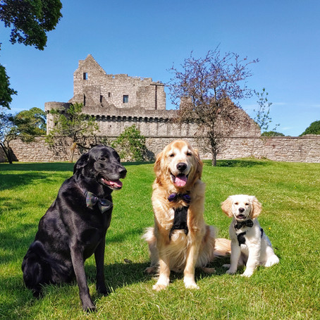 Stirling's First Castle: An Exploration of Craigmillar Castle