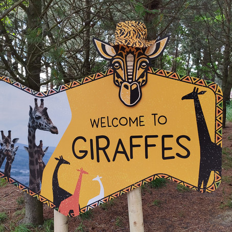 Welcome to Giraffes, Baby Animals, and More at Edinburgh Zoo
