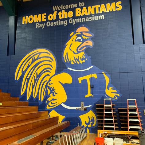 Saving the Bantam's Bleachers
