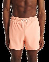 Board shorts_anf_2.png