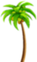 palm flippes.png