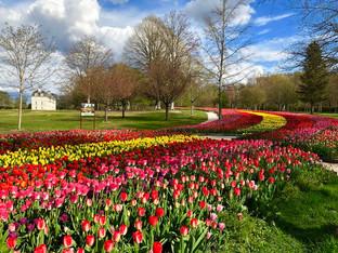 Cheverny ouvre ses jardins dès le 3 avril