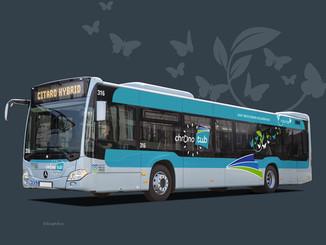 De nouveaux bus mild hybrides sur le réseau Tub