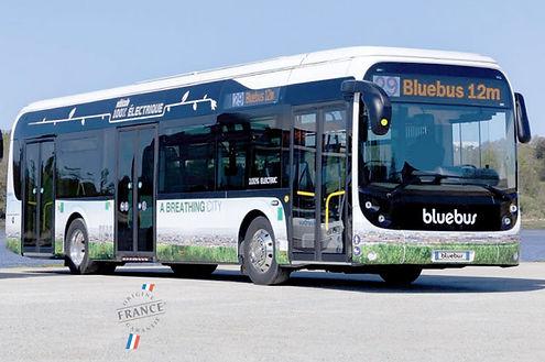0-3-Bluebus-12-metres.jpg