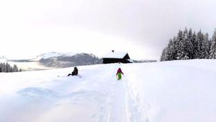 Montagne : année noire sous le manteau blanc