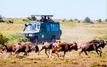 Tanganyika Expéditions propose des séjours avec des conditions assouplies en Tanzanie