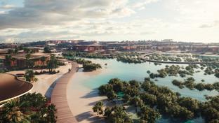 """L'Arabie Saoudite lance le projet """"Coral Bloom"""""""