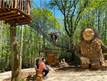 Terra Botanica dévoile les trois géants des «Mystères de la Forêt»