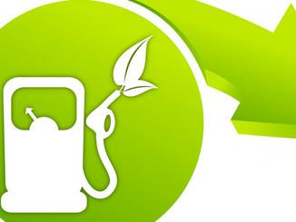 Le marché des biocarburants