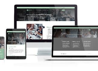 Editions, Conseil en Mobilité lance son site