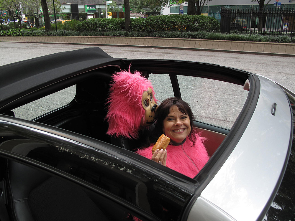 Pink Gorilla takes a break to eat a croissant in her Smart Car.
