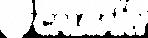 Ucalgary horizontal white.png