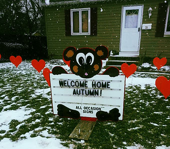 "Our alternative birth announcement is our adorable Teddy Bear sign,  also available for your baby's homecoming.  It is an attractive 4'X4' hand painted sign that includes  the baby's name and birth information.  The information is inserted into the bears body with 4"" plastic lettering.  The teddy bear is holding a sign that announces ""It's a Girl/Boy"" and is surrounded by our heart lawn ornaments. (Too cute!)"