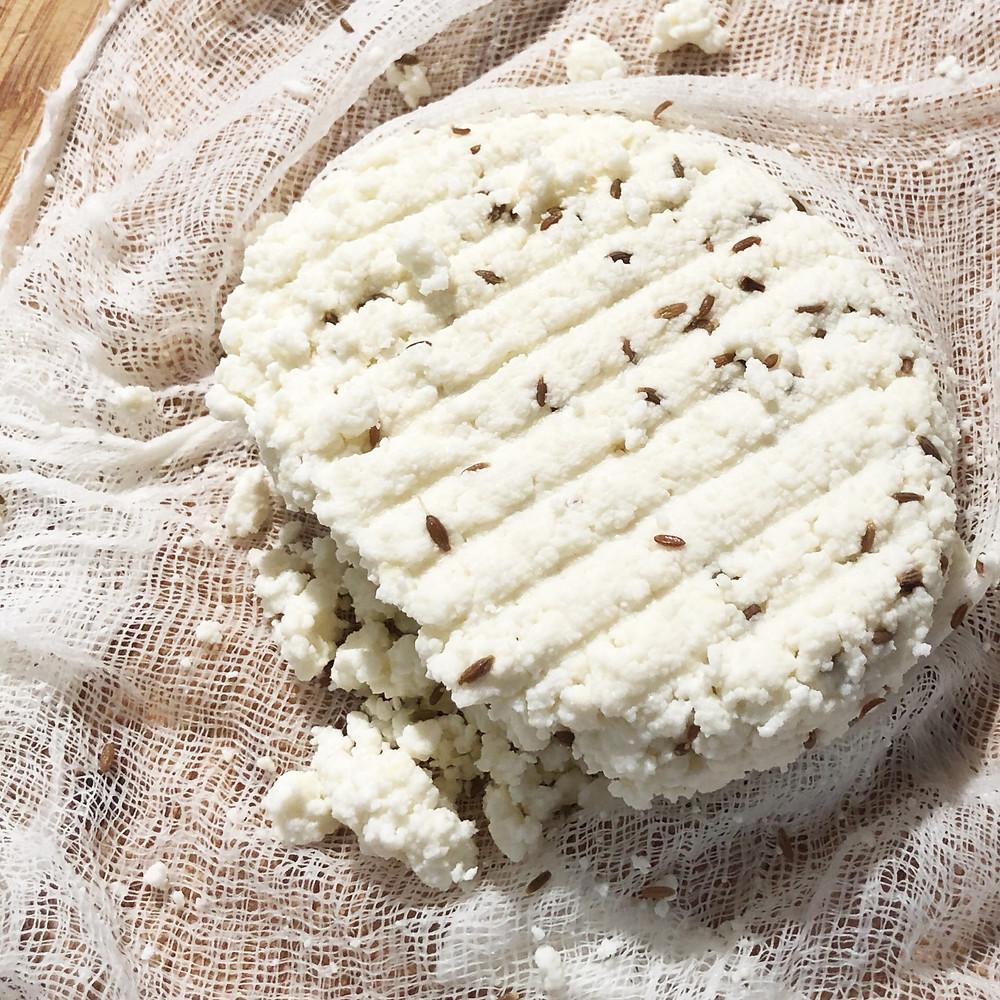 Gluten-free Paneer Cheese